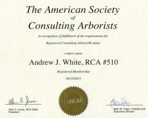 ASCA RCA Cert