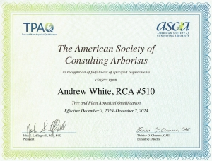 TPAQ Certificate 001